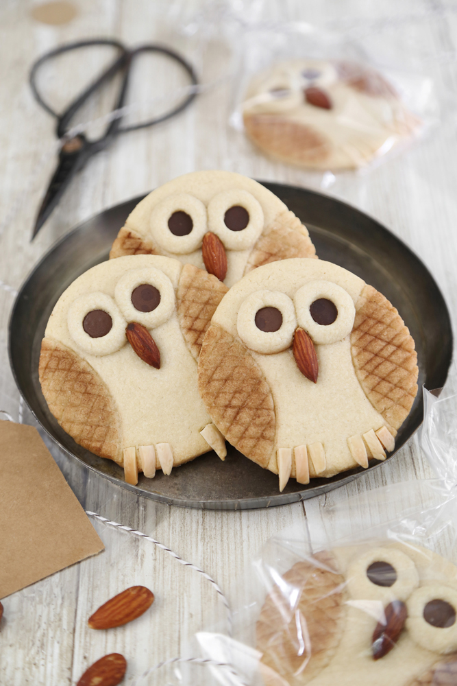 Owl Butter Cookies