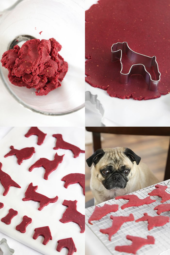 Christmas Cookies For Dogs
