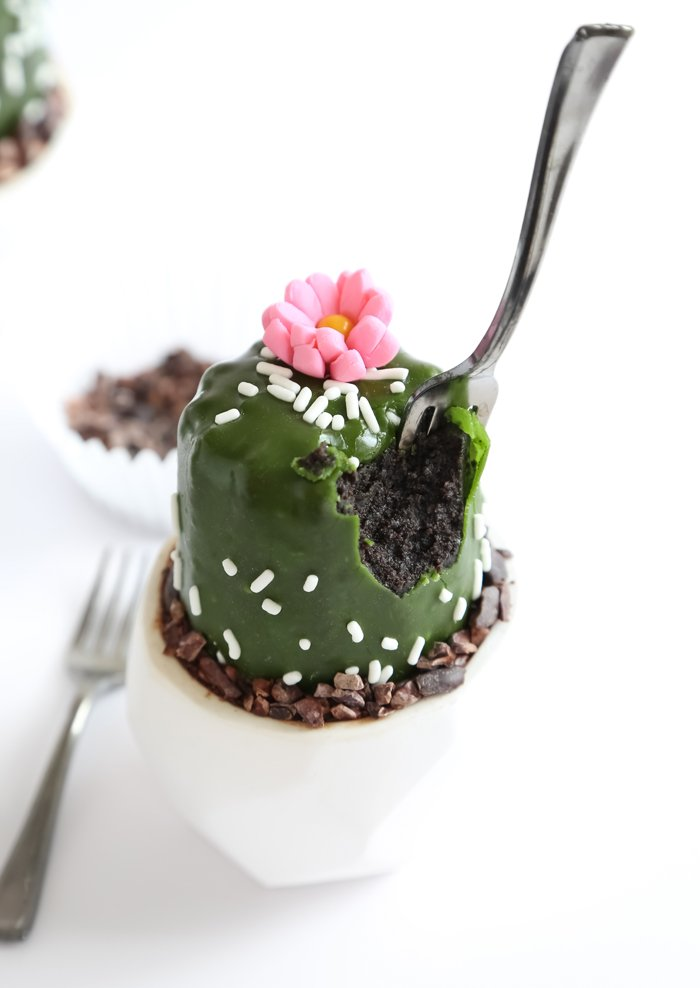 Mini Potted Cactus Cakes
