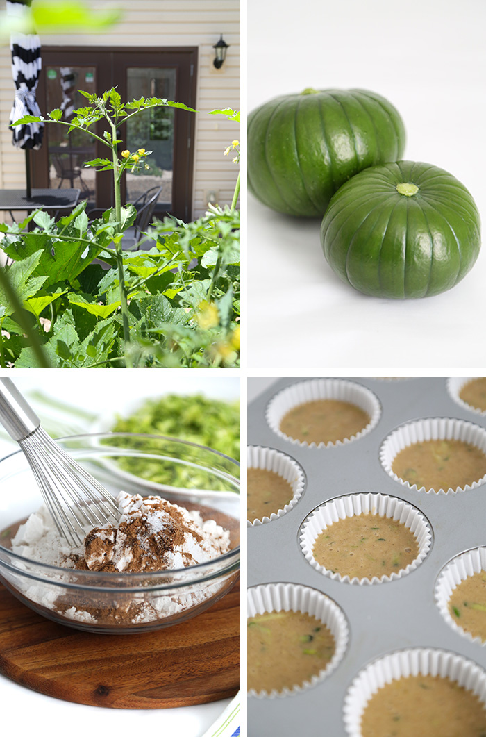 Zucchini Olive Oil Muffins with Cinnamon Crunch Streusel