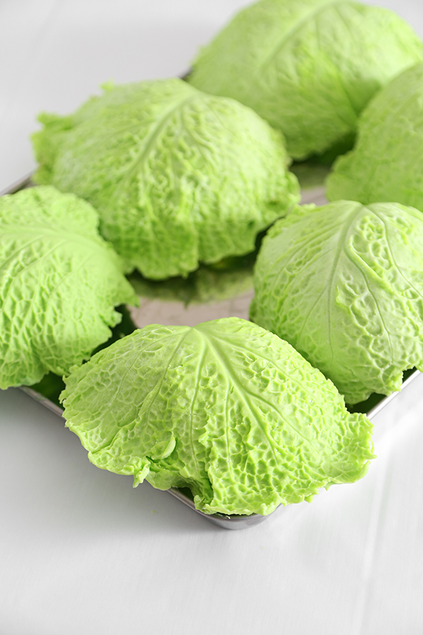 chocolate cabbage leaves